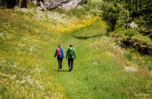 Hiking Ahrntal Dolomites